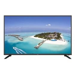 FL43101 F&U TV LED LED FULL HD 43''