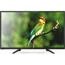 FL24112 F&U TV LED 24''